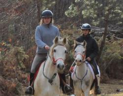 randonnee-equestre-600-x-471.jpg